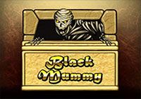 Black Mummy T`n`P