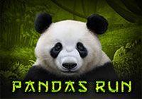 Pandas Run T`n`P