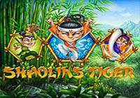 Shaolin`s Tiger T`n`P